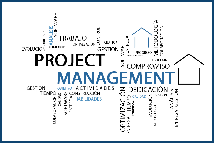 La figura del Project Management