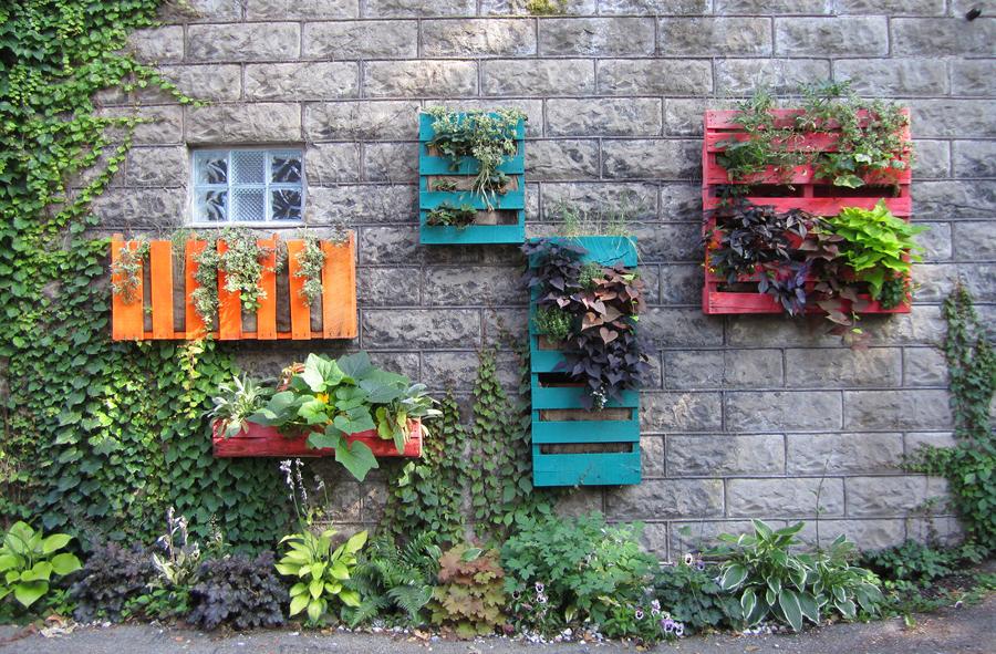 decoracion-plantas-palets