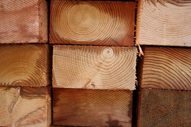 madera de cedro del libano
